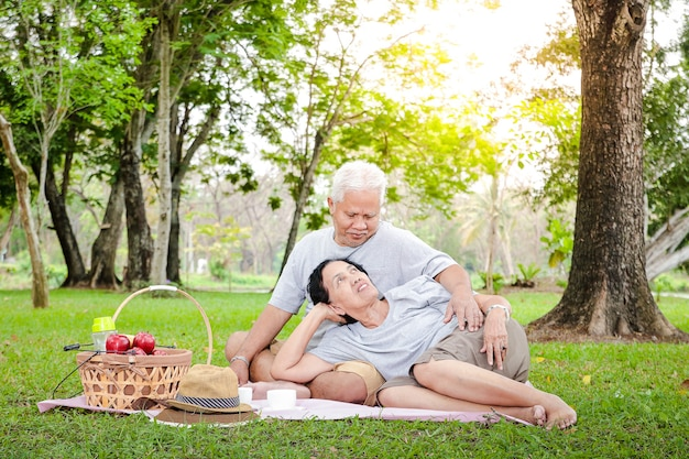 Casais idosos asiáticos sentam-se para piqueniques e relaxam no parque.