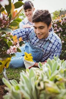 Casal alegre, mantendo as plantas no jardim