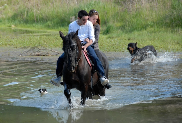 Casal andando em um rio com cães