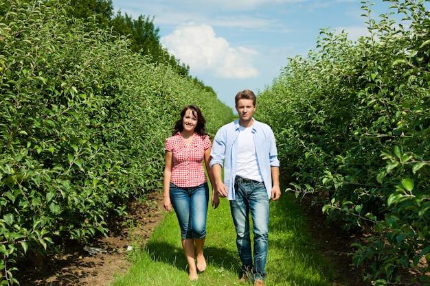Casal andando no pomar de frutas
