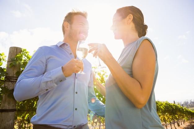 Casal brindando o copo de vinho em dia ensolarado