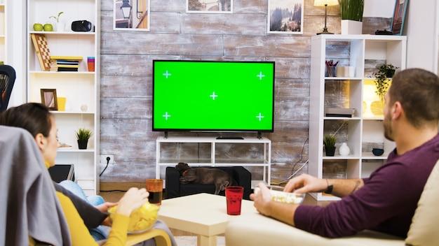 Casal caucasiano sentado em cadeiras, olhando para a tv com tela verde com o gato na frente dele.