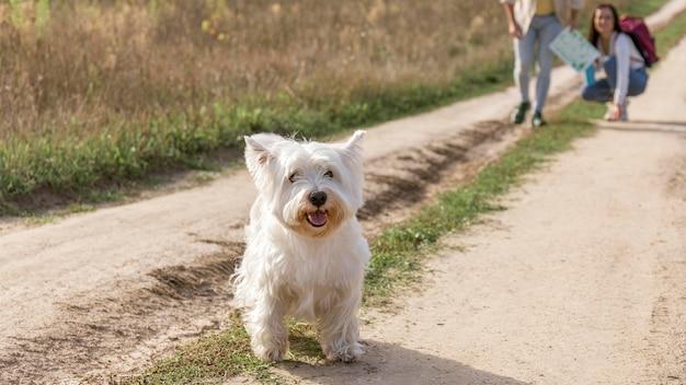 Casal close-up com cachorro ao ar livre