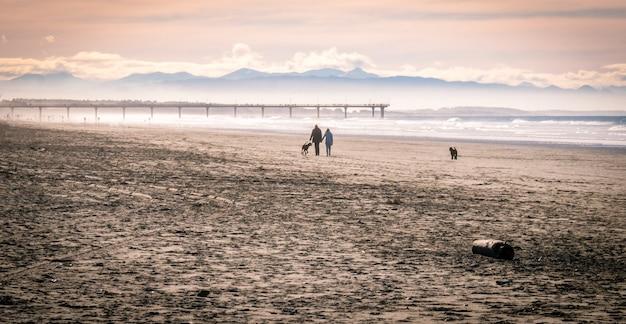 Casal com cachorro caminhando na praia pouco antes do pôr do sol colorido na nova zelândia