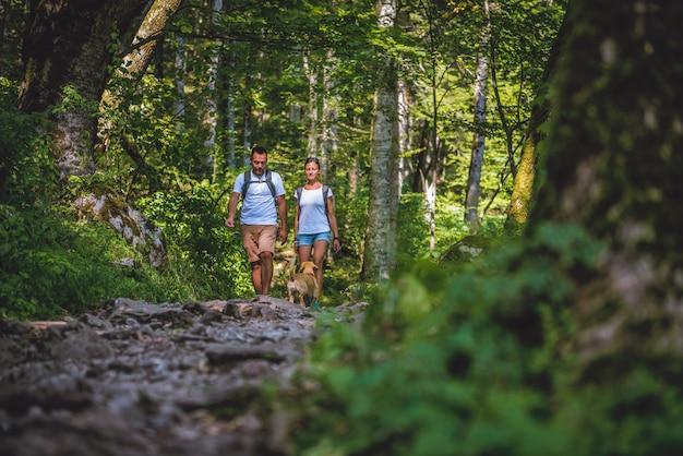 Casal com um cachorro, caminhadas na floresta