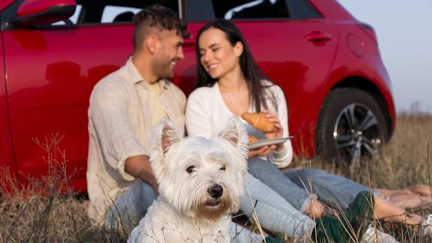 Casal comendo ao ar livre com cachorro