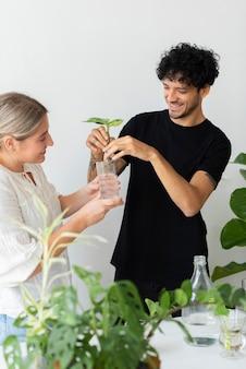 Casal de água propagando suas plantas domésticas
