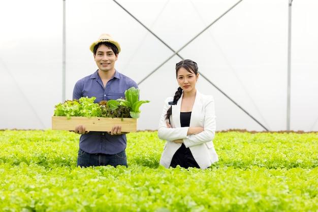 Casal de fazendeiros asiáticos trabalha em uma fazenda de vegetais hidropônicos com felicidade e alegria na fila