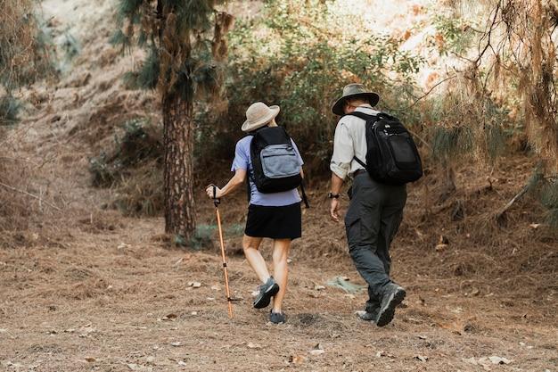 Casal de idosos ativos em um encontro na floresta
