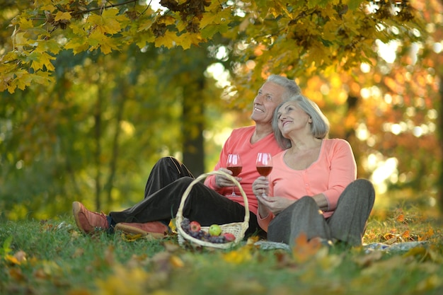 Casal de idosos descansando no parque de outono com comida de piquenique