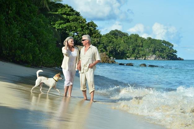 Casal de idosos felizes descansando em uma praia tropical com um cachorro
