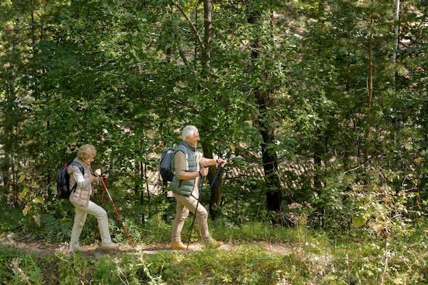 Casal de idosos usando roupas esportivas caminhando pelo caminho da floresta com bastões de trekking enquanto passa o lazer em um ambiente natural