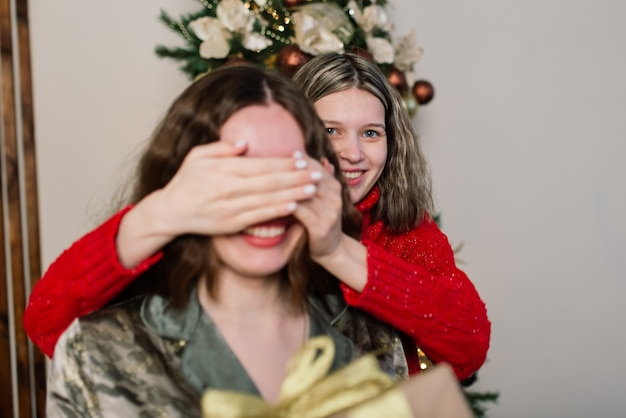 Casal de lésbicas juntos dentro de casa se comunicam alegremente, preparando-se para a celebração do natal.
