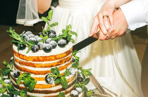 Casal de noivos está cortando bolo rústico moderno. sobremesa de esponja aberta com folhas de hortelã e uvas de frutas frescas por cima. bolo de casamento do estilo boho. noivo de terno preto e noiva em um vestido branco elegante.