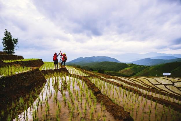 Casal em arroz de campo