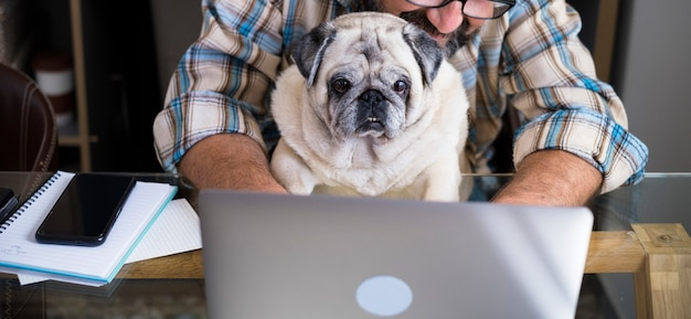 Casal engraçado, homem e cachorro, trabalham juntos em casa com o computador de trabalho on-line laptop em amizade e felicidade - conceito de estilo de vida digital de trabalho inteligente para pessoas modernas