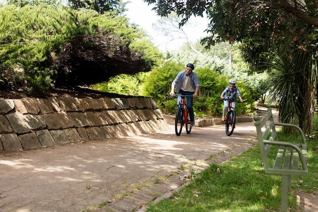 Casal feliz, andar de bicicleta no parque