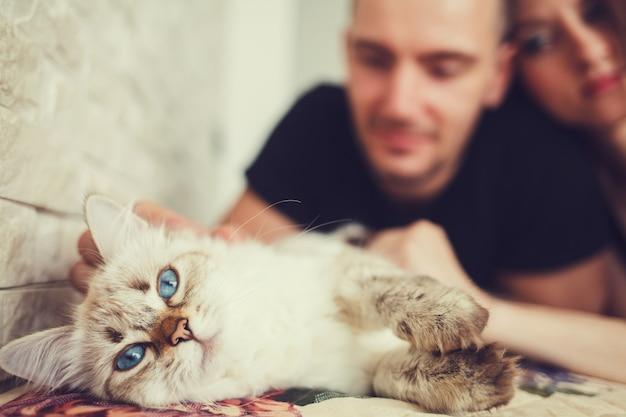 Casal feliz com gato