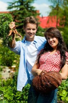 Casal feliz mostrando os legumes que estão colhendo