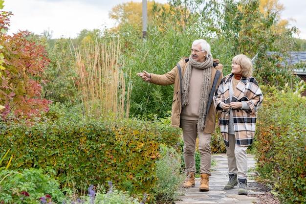 Casal feliz sênior em trajes casuais aconchegantes descendo uma estrada estreita entre arbustos e árvores enquanto discute as plantas em seu jardim