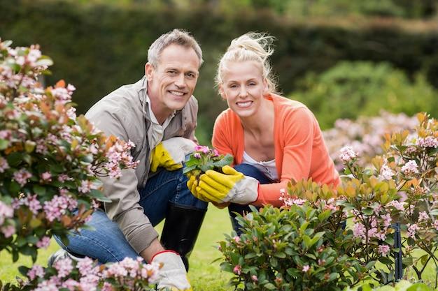 Casal fofo olhando flores no jardim