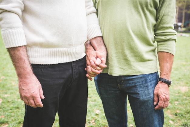 Casal gay de mãos dadas no parque
