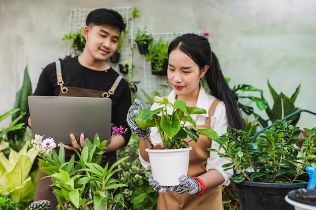 Casal jovem de jardineiros asiáticos usando avental usa equipamento de jardim e um laptop para pesquisar e cuidar das plantas da casa na estufa