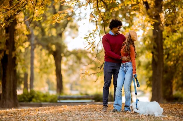 Casal multirracial andando com cachorro no parque outono