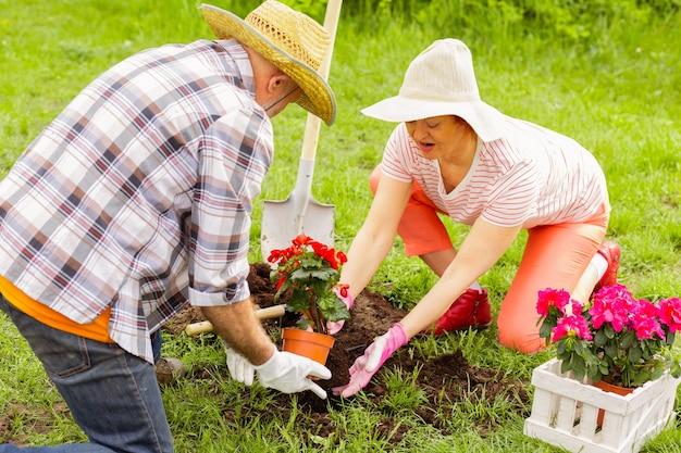 Casal plantando flores. vista superior de um casal de aposentados amando a natureza plantando flores perto de uma casa de campo