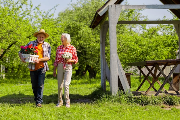 Casal rindo. um homem e uma mulher felizes aposentados rindo depois de plantar flores em vasos juntos
