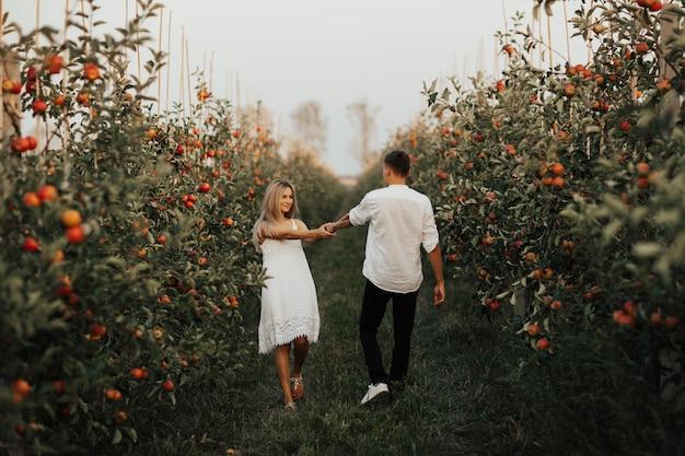 Casal romântico caminha no pomar de maçãs no verão e de mãos dadas.