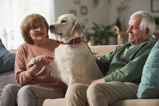 Casal sênior sentado no sofá brincando com seu cachorro fofo na sala de estar