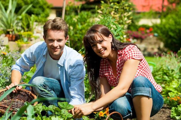 Casal sorridente trabalhando em sua horta