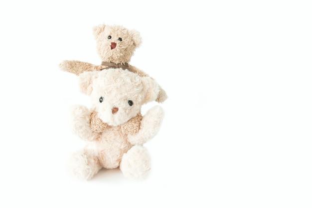 Casal ursinho apaixonado, doce casal boneca no dia dos namorados