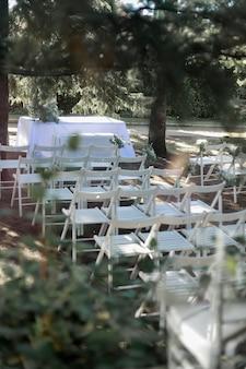 Casamento ao ar livre no meio de árvores