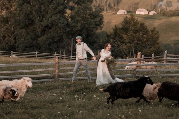 Casamento vintage da noiva e do noivo em uma fazenda com um cavalo nas colinas de pico