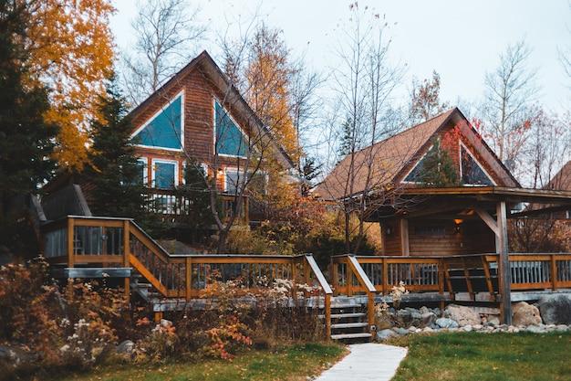 Casas alinhadas cercadas por árvores durante o dia