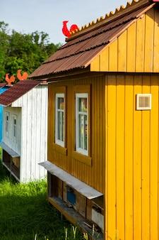 Casas coloridas de abelhas em um prado verde na zona rural