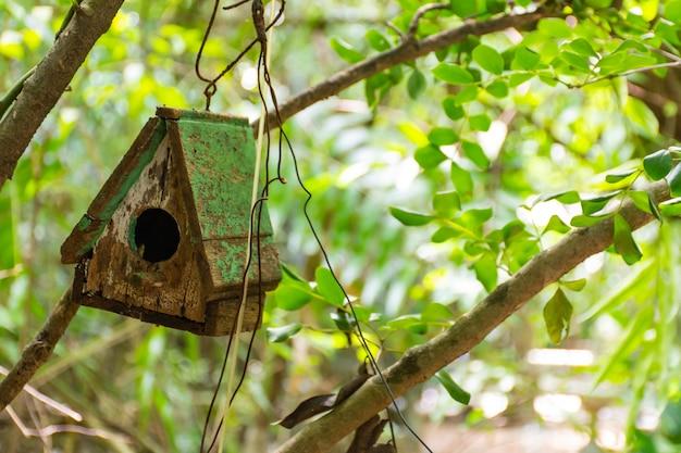 Casas de madeira para os pássaros em sua decoração de jardim.
