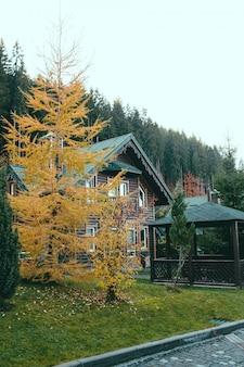 Casas de madeira perto da floresta