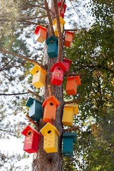 Casas de pássaros de madeira coloridas em uma árvore