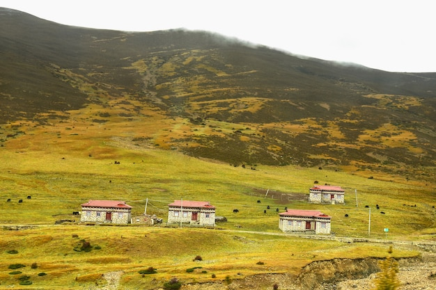 Casas tibetanas na zona rural de daocheng