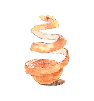 Casca de laranja em fatias em aquarela de frutas cristalizadas