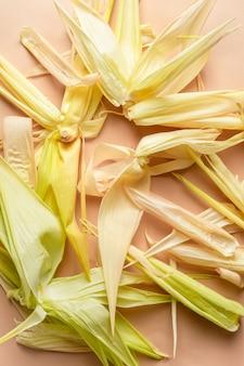 Cascas vazias de espigas de milho