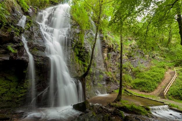 Cascata de água por rochas e entre árvores verdes Foto Premium