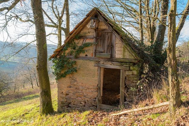 Casinha abandonada na colina rodeada de árvores