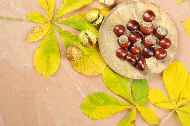 Castanhas com folhas de outono maple