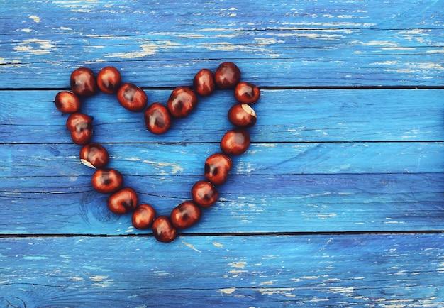 Castanhas-da-índia em forma de coração sobre fundo azul de tábuas de madeira envelhecidas. aesculus hippocastanum.