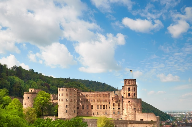 Castelo de heidelberg foto, panorama