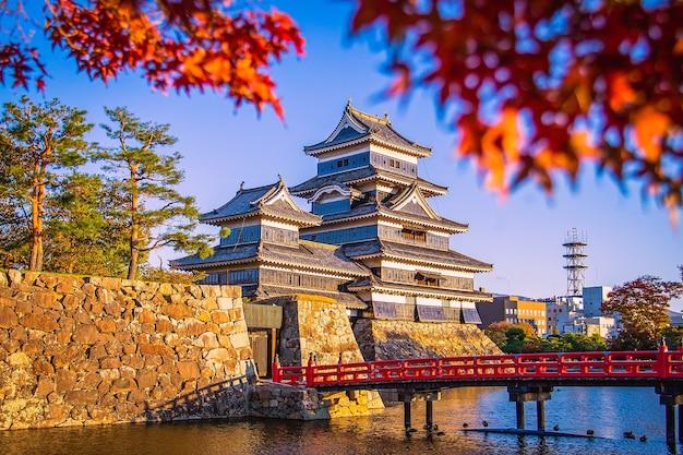 Castelo de matsumoto com folhas de bordo no outono em nagano, japão